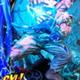 """放て!真空波動拳!!『ストリートファイターV』より「リュウ」が迫力の""""超""""ハイエンドフィギュアで登場"""