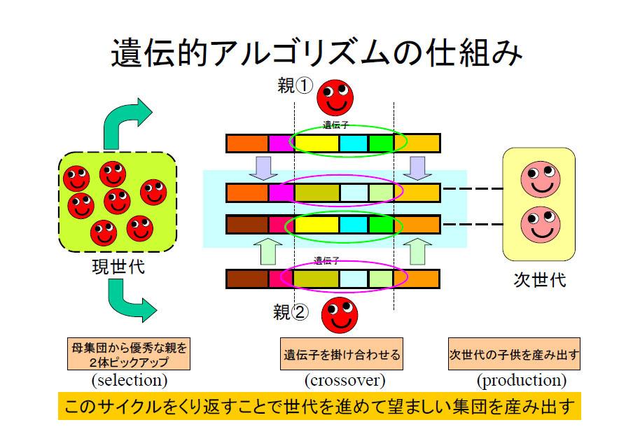 アルゴリズム 遺伝