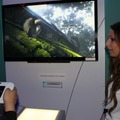 【E3 2011】Wii Uで味わう日本の四季『Japanese Garden』ムービー