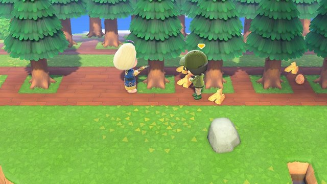 で どうぶつ ふたり の やり方 森 遊ぶ