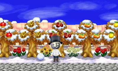 の フルーツ どうぶつ あつまれ 森