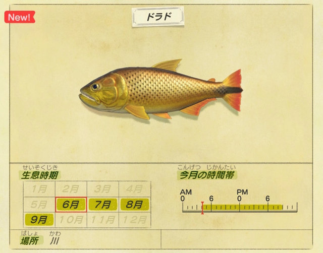 どうぶつの森 7月 魚