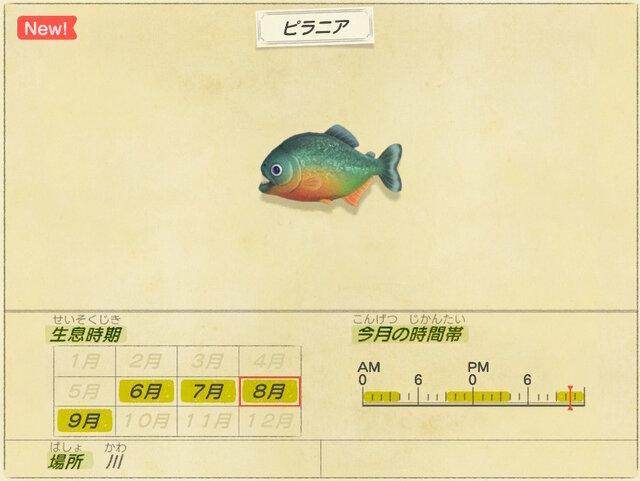 魚 5 に 釣れる あつ 森 月 【あつ森】離島ツアーの種類一覧とレア島の行き方【あつまれどうぶつの森】