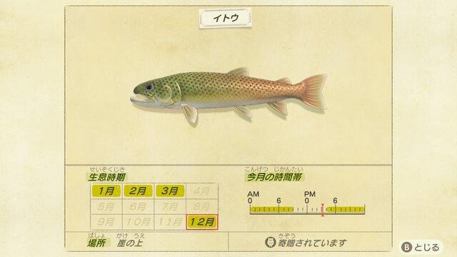 値段 虫 魚 あつ 森